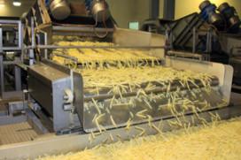 Fritesfabrikant McCain breidt productie uit