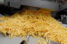 Frites wordt duurder door kou