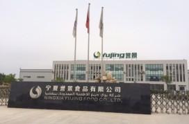 Nederlandse productielijn voor Chinese frites