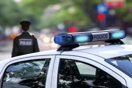 Politiehond bijt snackbar-inbreker