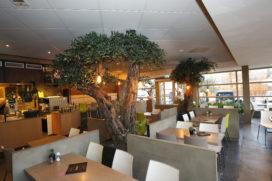 De Snackbar lunch and dinner: eten onder olijfbomen