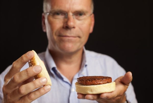 Mosa-Meat-hamburger-2