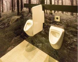 Vaker schoon toilet in horeca dan in ziekenhuis